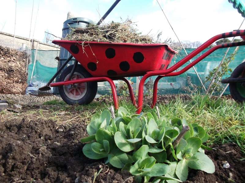 The loaded Barrow Bug