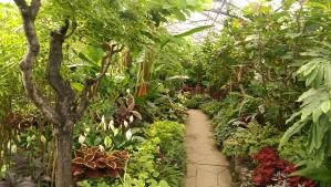 Allen Garden Glasshouse Toronto