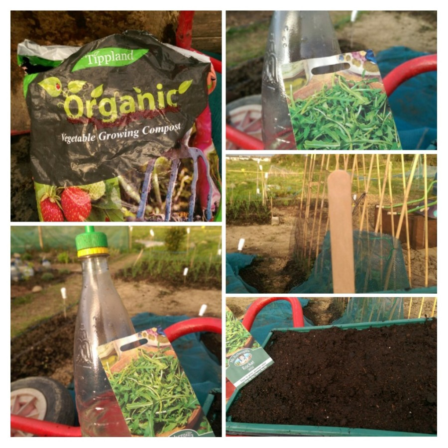 Compost, Seed Tray, seed, Water, Label...components of rocket Science