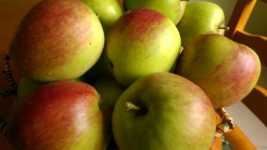 James Grieve Apples